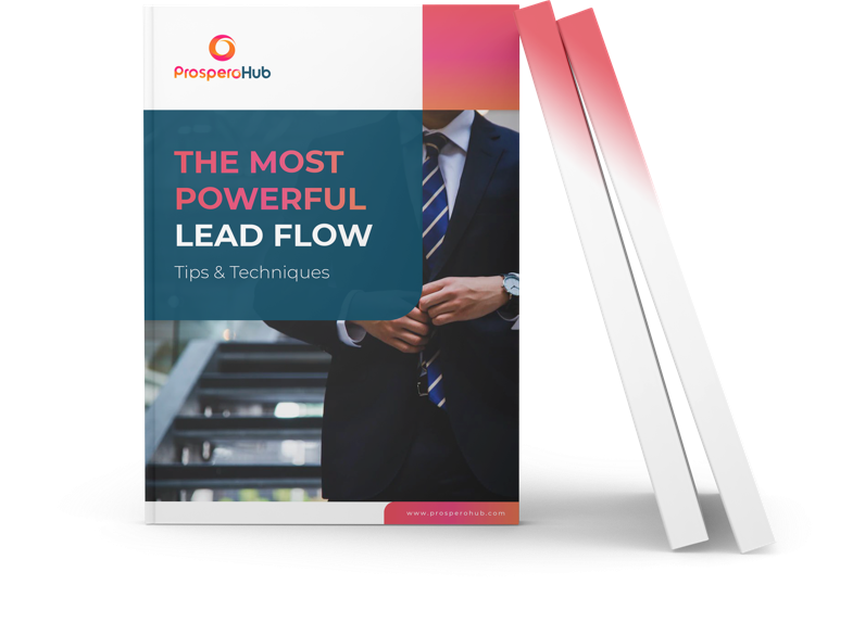 The Most Powerful Lead Flow landing page book image